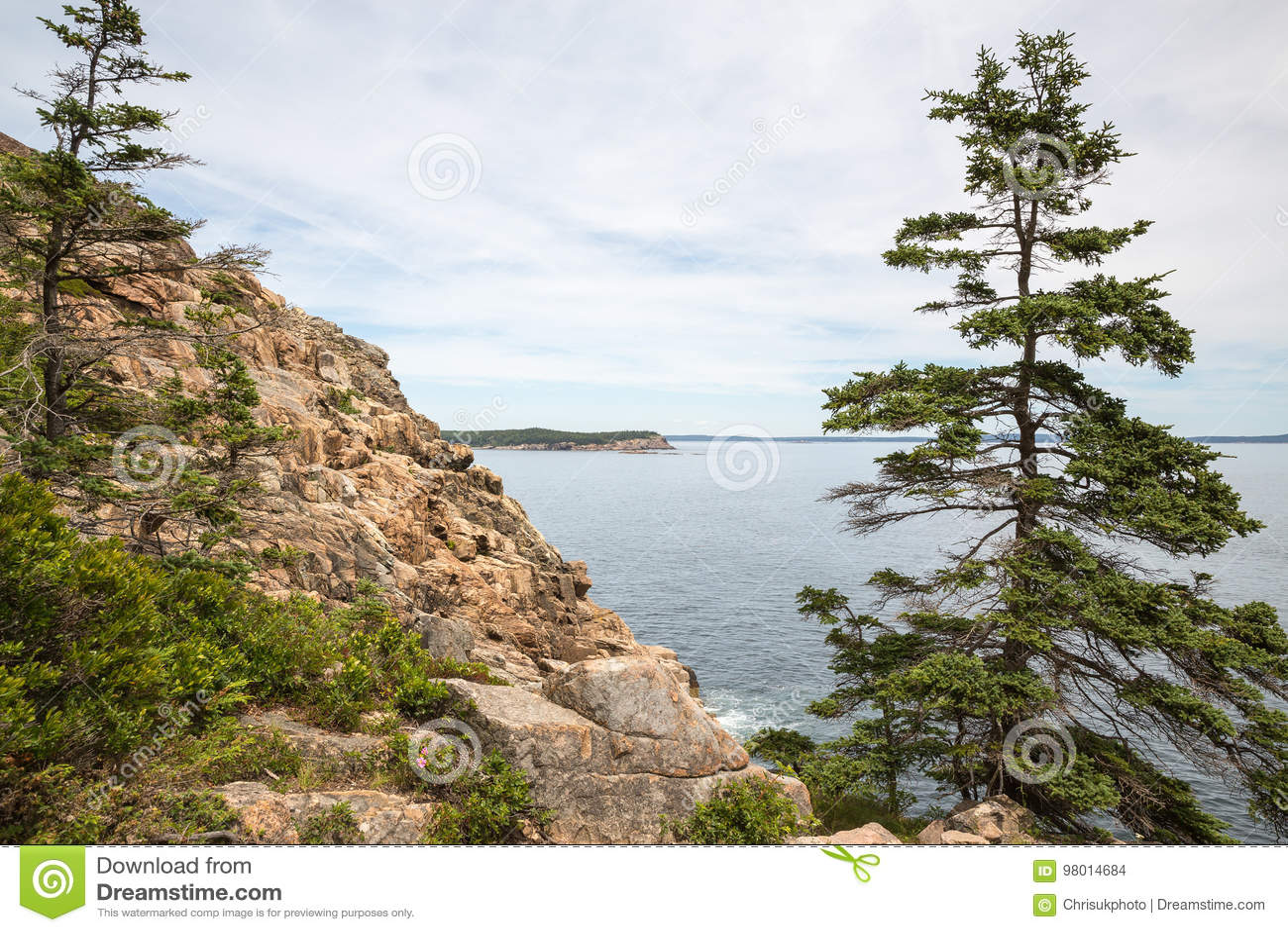 Απότομος βράχος ενυδρίδων στο εθνικό πάρκο ΗΠΑ Acadia