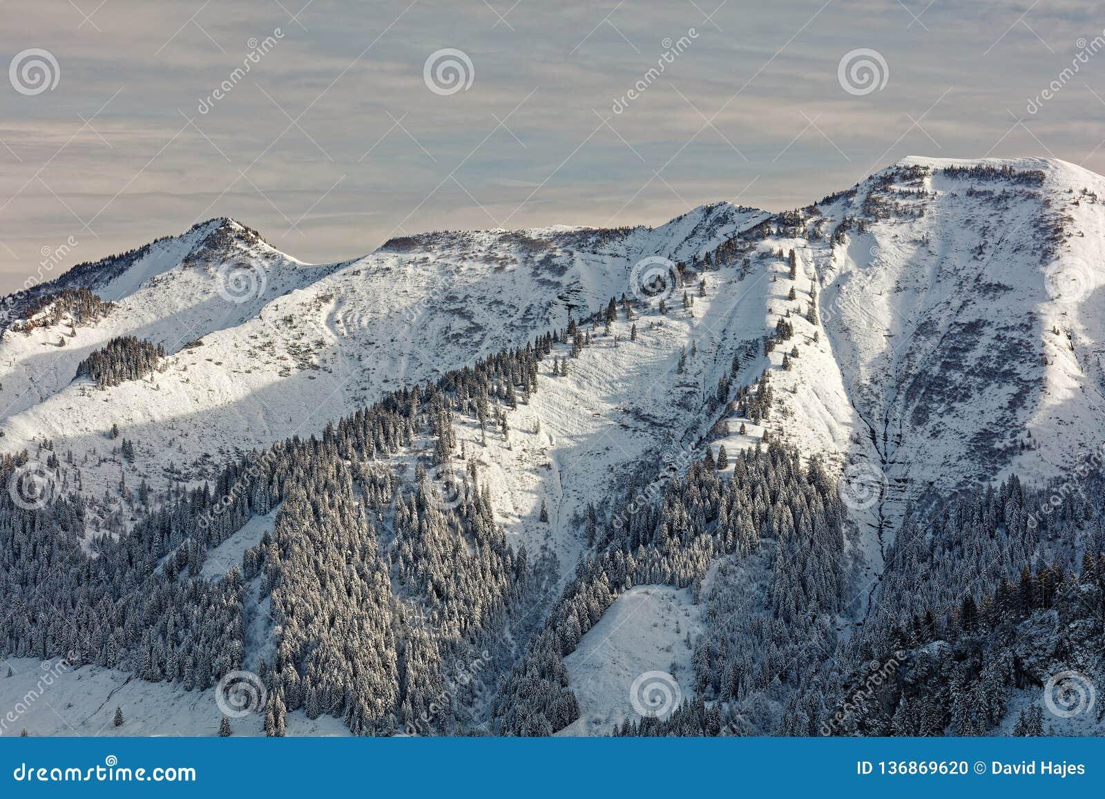 Απόψεις του χιονώδους ορεινού όγκου Schoener Mann από Schwarzenberg