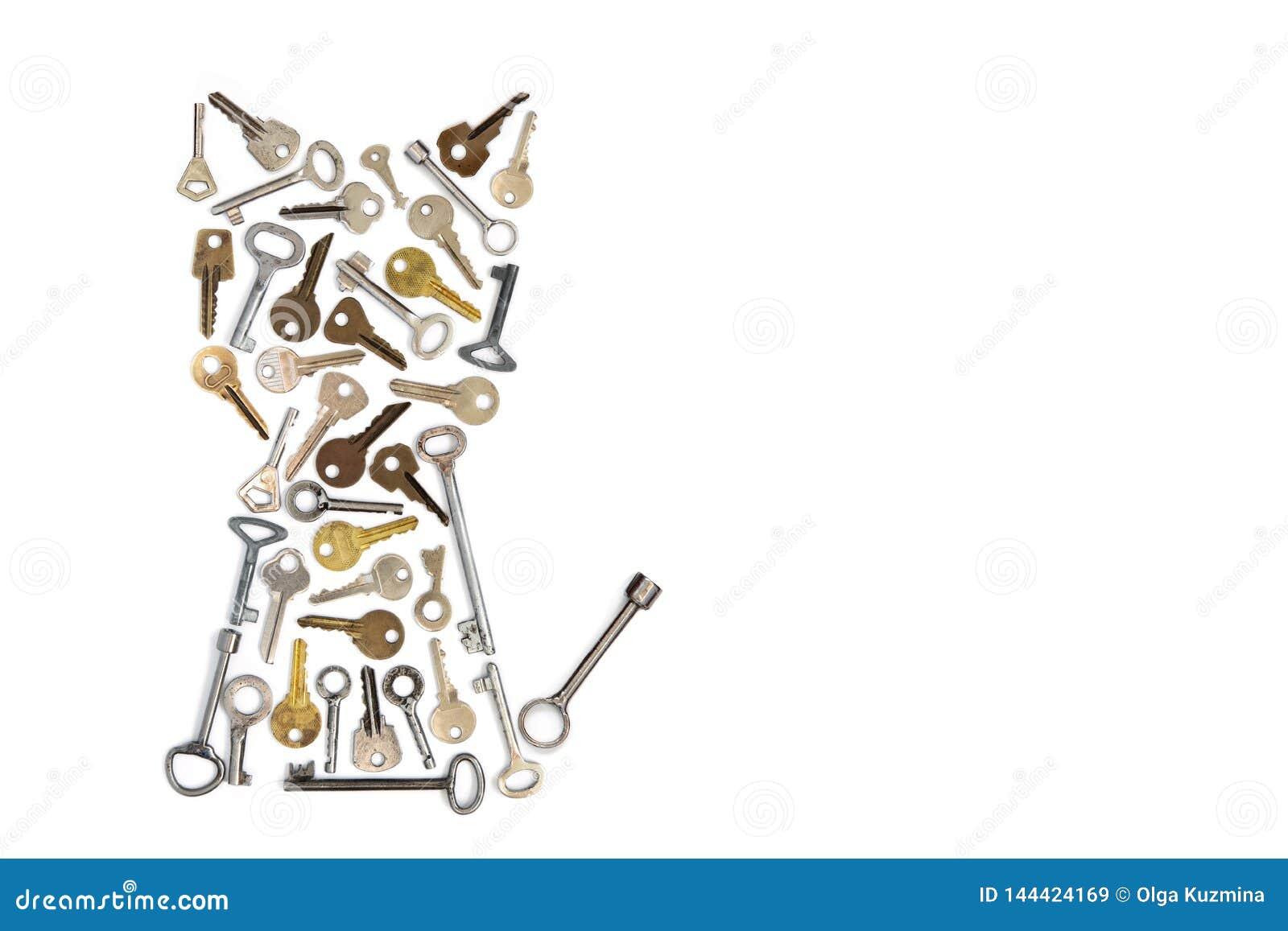 Αριθμός γατών φιαγμένος από κλειδιά απομονωμένο στο λευκό υπόβαθρο Εννοιολογική φωτογραφία Θέση για την εγγραφή σας