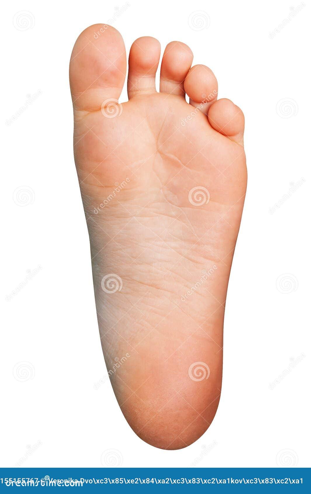 Αριστερό πόδι Cutted έξω Απομονωμένο ανθρώπινο πέλμα στο άσπρο υπόβαθρο