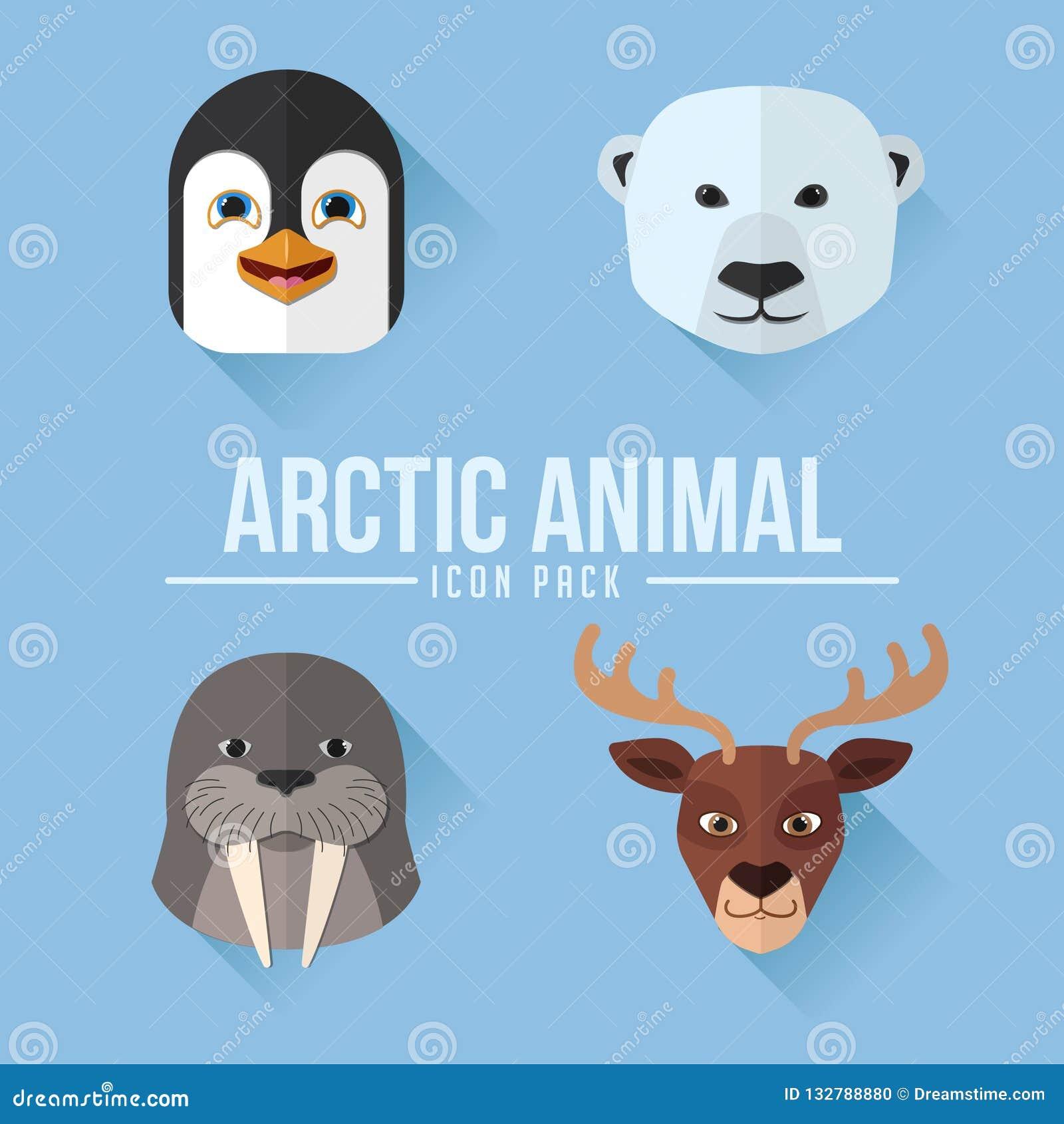 Αρκτικό ζωικό επίπεδο πακέτο εικονιδίων