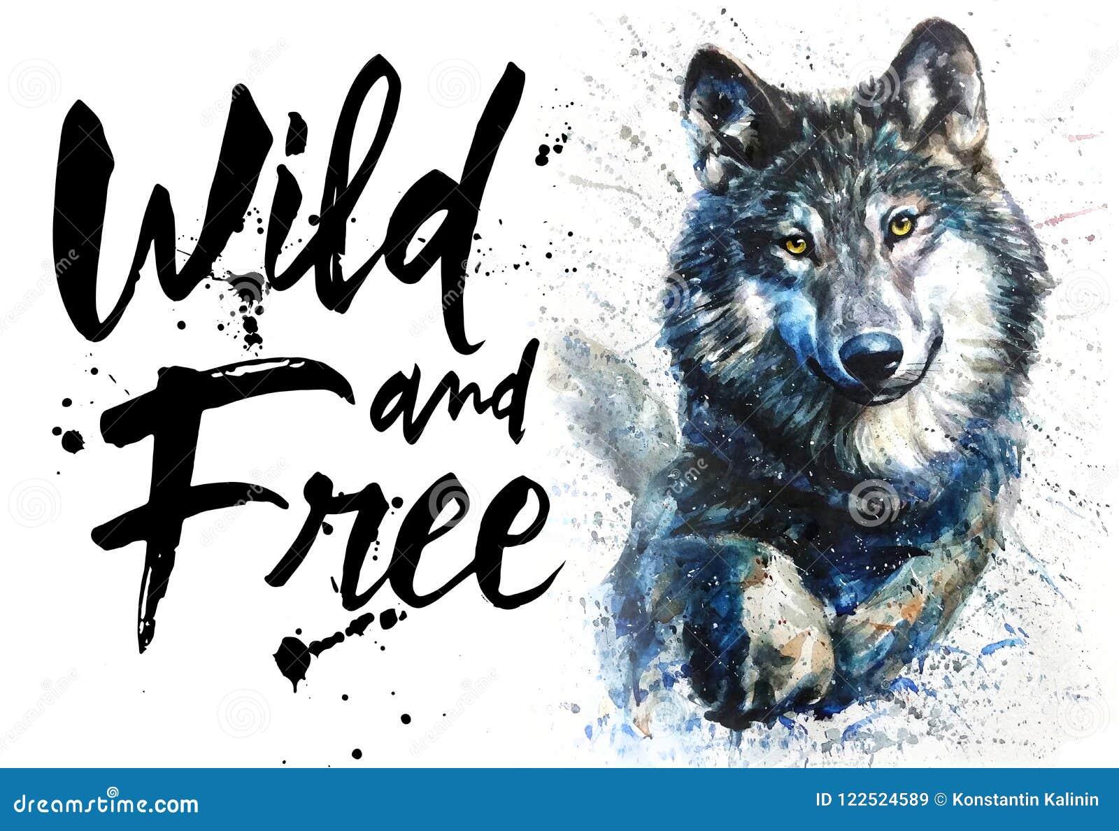 Αρπακτική άγρια φύση ζώων watercolor λύκων, άγριος και ελεύθερος, βασιλιάς του δάσους, τυπωμένη ύλη για την μπλούζα