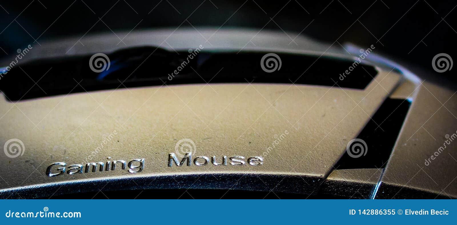 Ασημένιο ποντίκι τυχερού παιχνιδιού για τον επαγγελματία