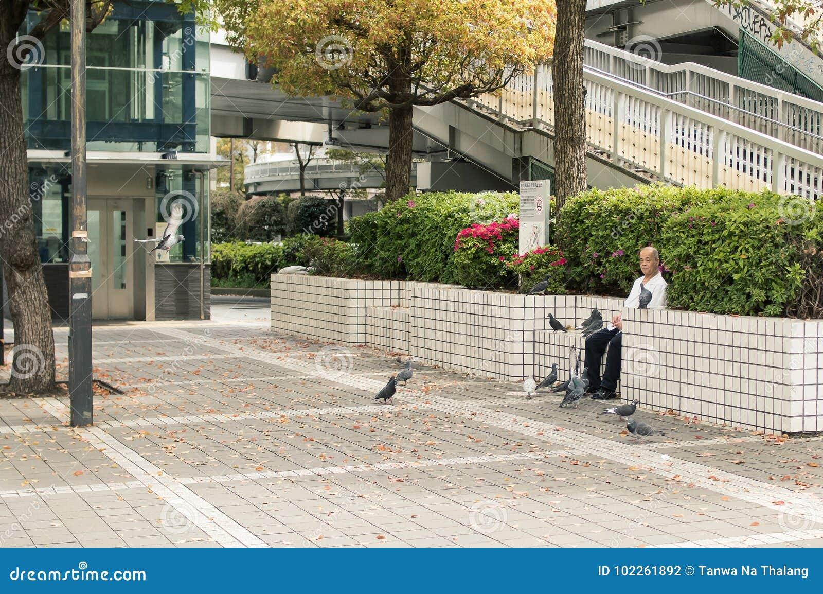 Ασιατικό παλαιό ταΐζοντας πουλί ατόμων στο πεζοδρόμιο
