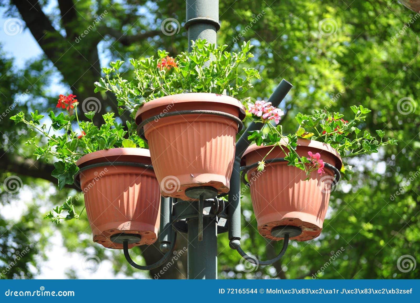 Αστικό δοχείο λουλουδιών