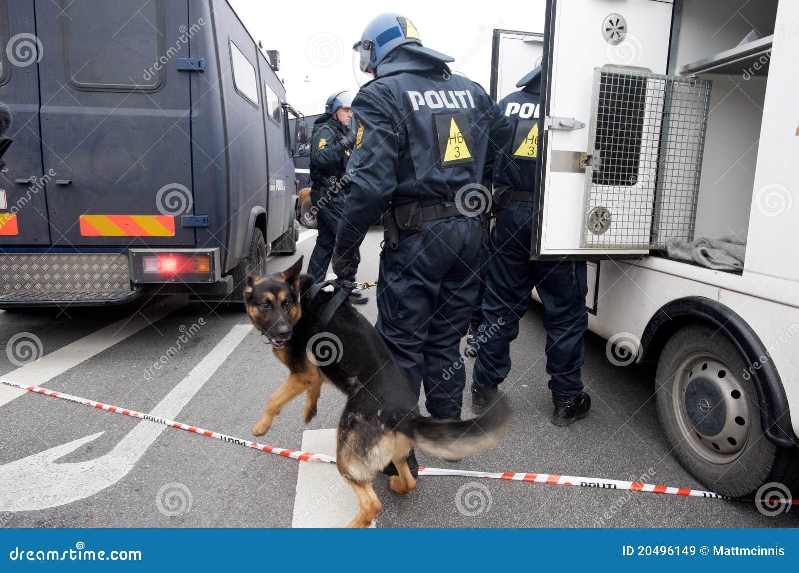 αστυνομία σκυλιών