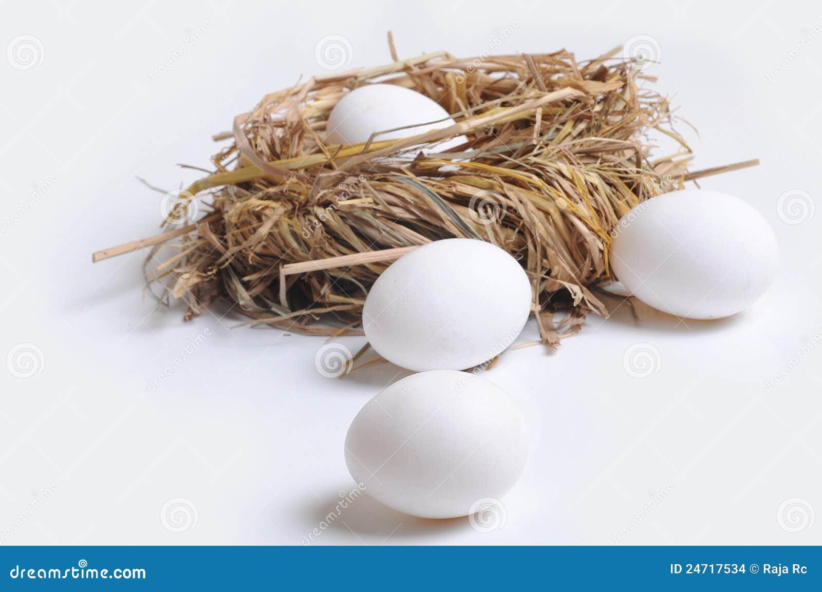 Αυγά και φωλιά