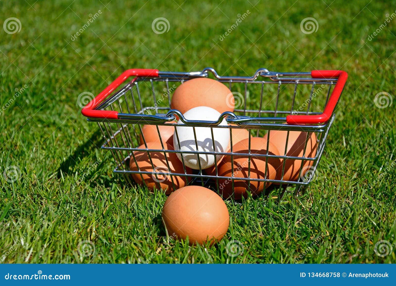Αυγά κοτόπουλου σε ένα καλάθι αγορών