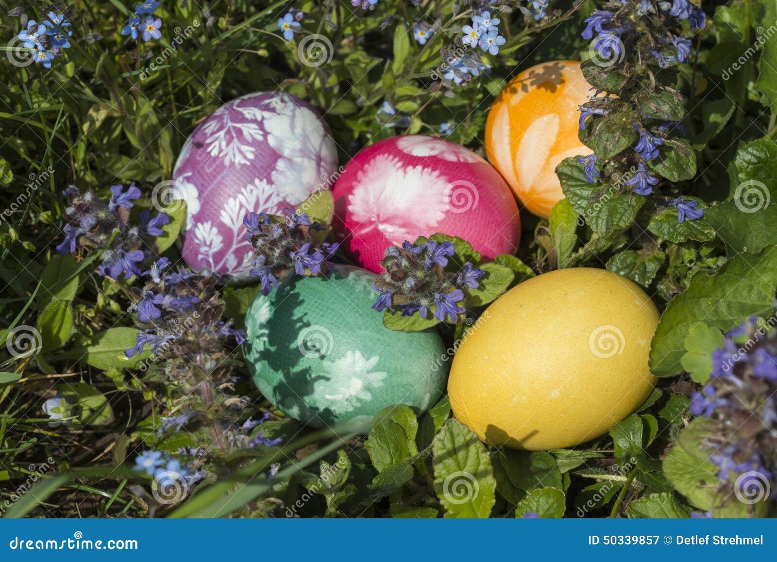 Αυγά Πάσχας στη χλόη 8