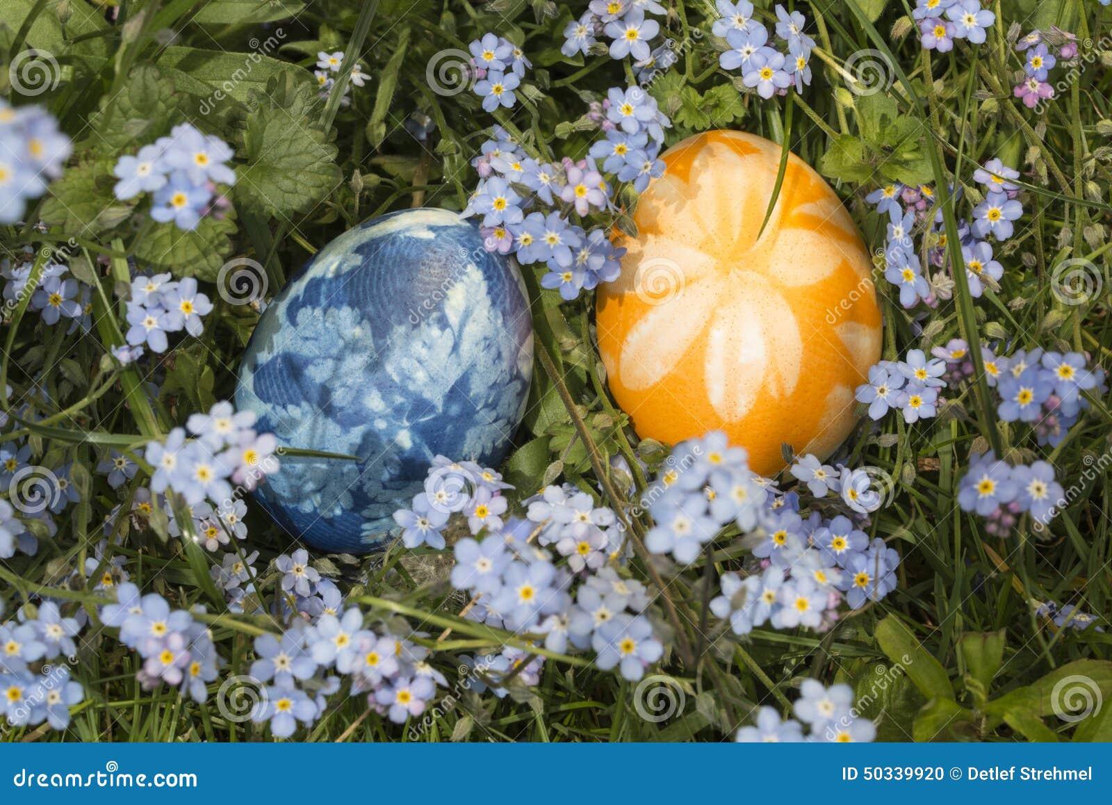 Αυγά Πάσχας στη χλόη 1