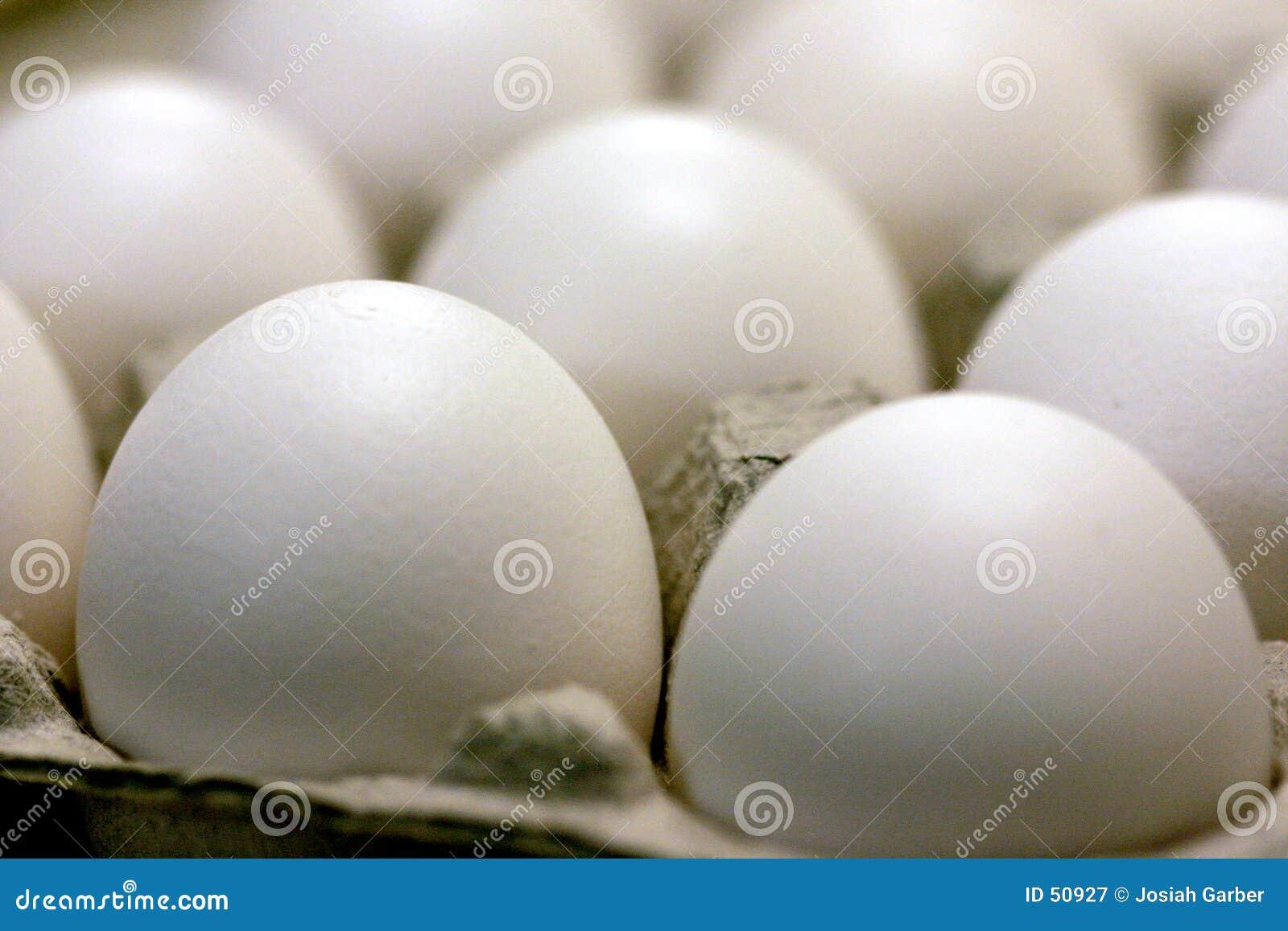 Download αυγά στοκ εικόνα. εικόνα από διακοπής, κύκλος, αυγό, άσπρος - 50927
