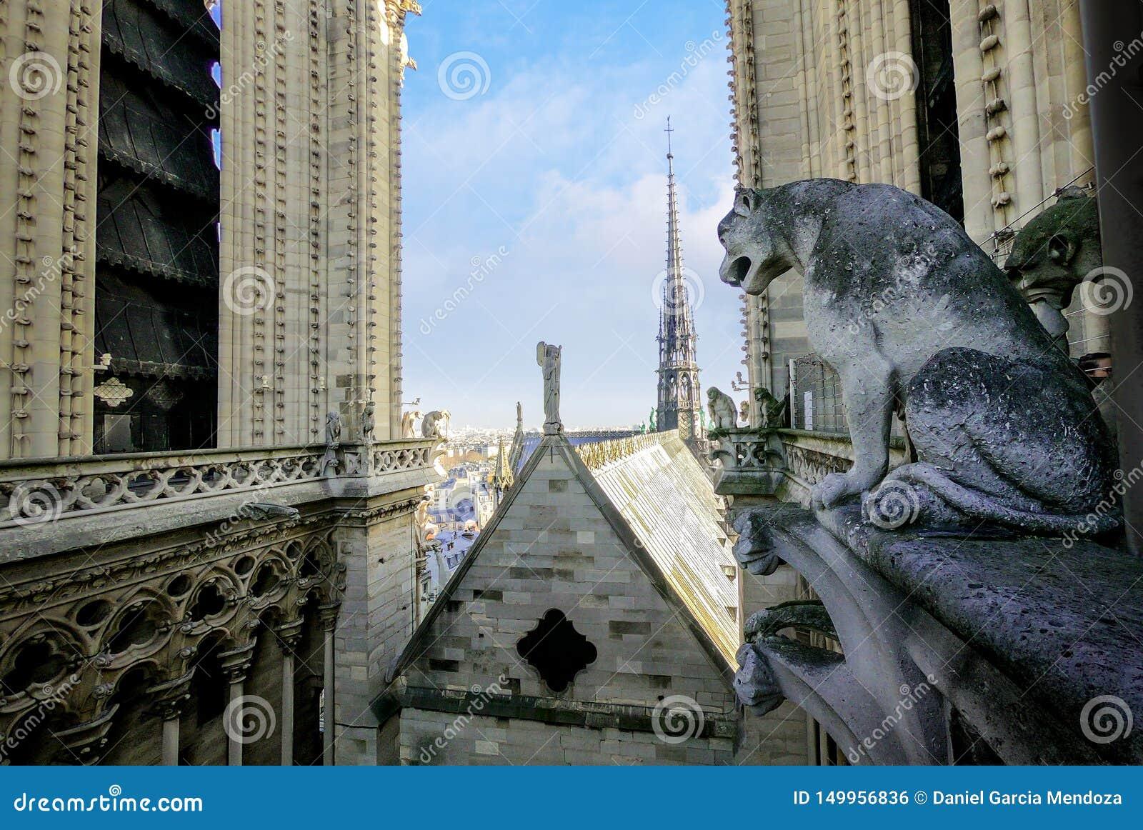 Αυθεντικός κώνος και ξύλινη στέγη του καθεδρικού ναού της Notre Dame άνωθεν το 2018 πριν της ζημίας και της αποκατάστασης πυρκαγι