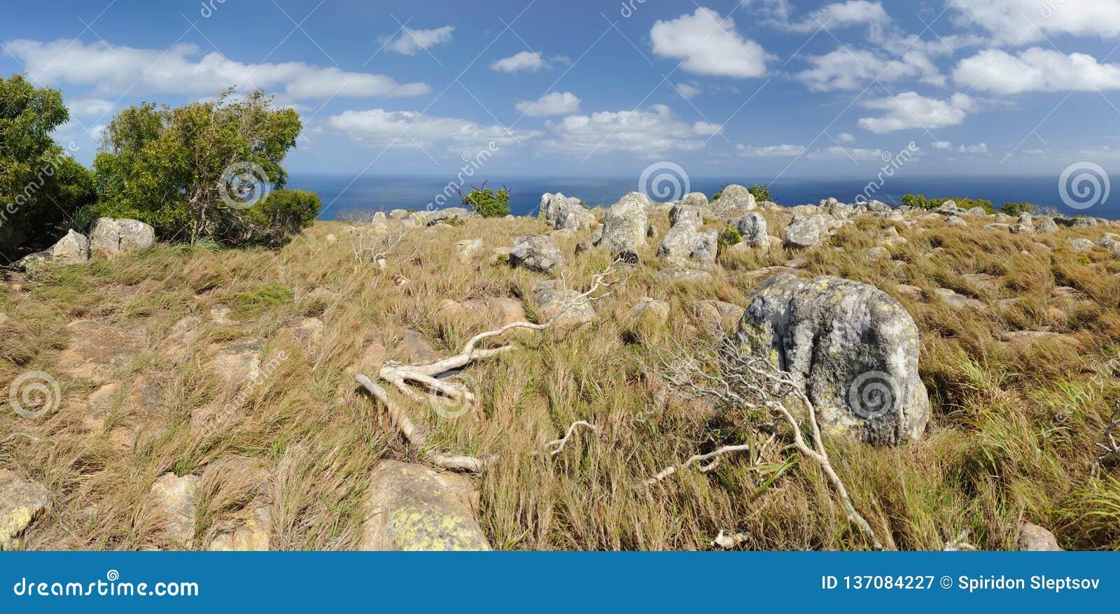 αυστραλιανό τοπίο Νησί σαυρών, ο μεγάλος σκόπελος εμποδίων, Queensland, Αυστραλία