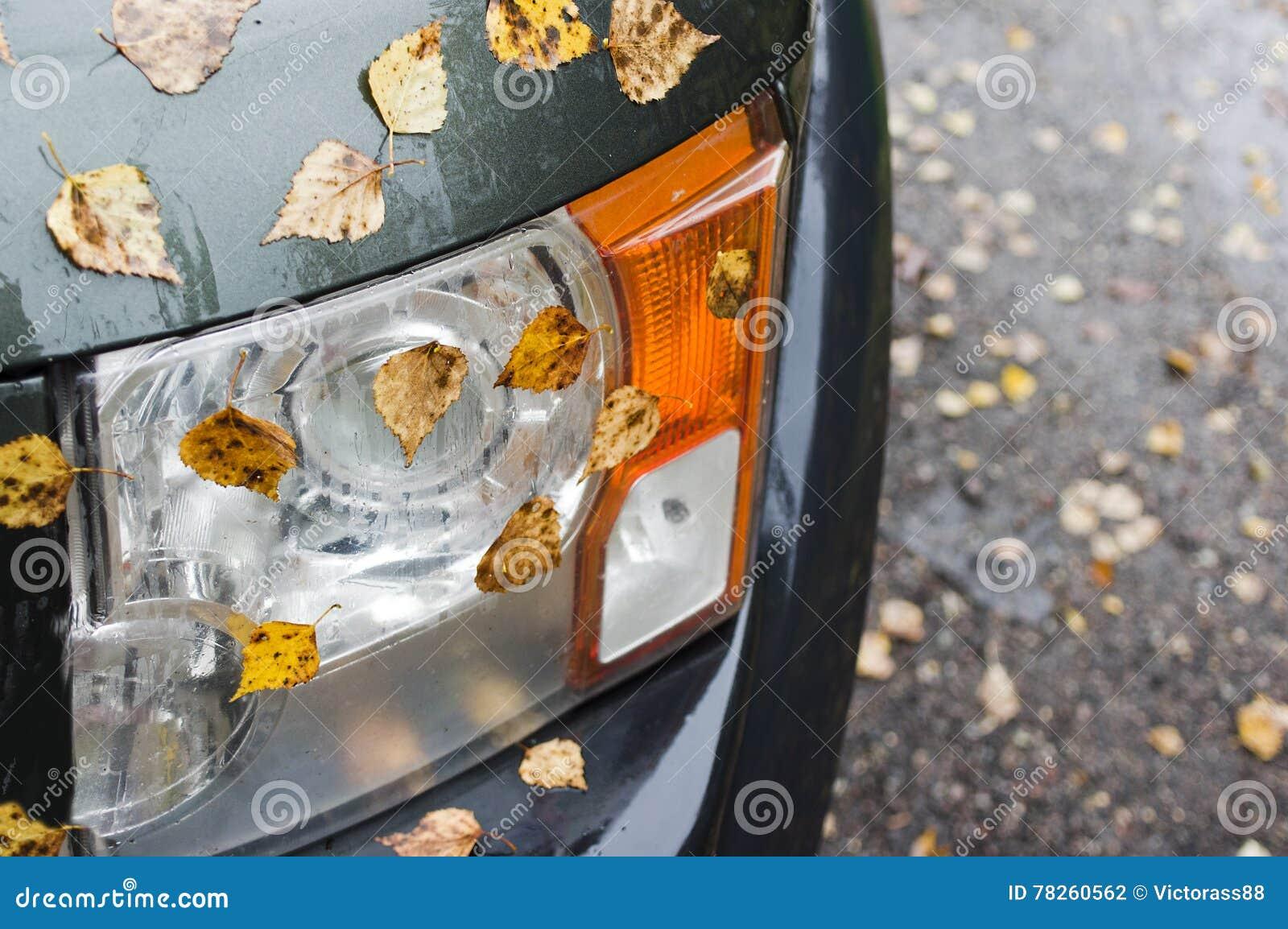 Αυτοκίνητο και φθινόπωρο