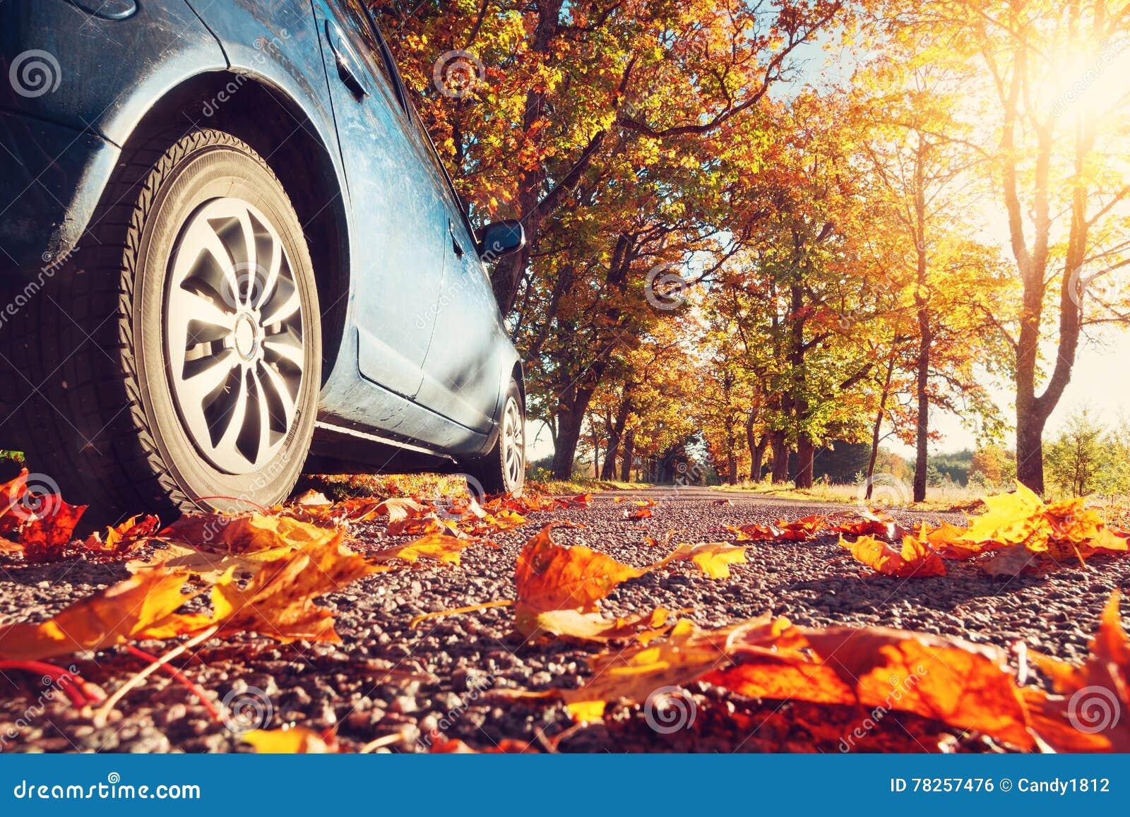 Αυτοκίνητο στο δρόμο ασφάλτου το φθινόπωρο