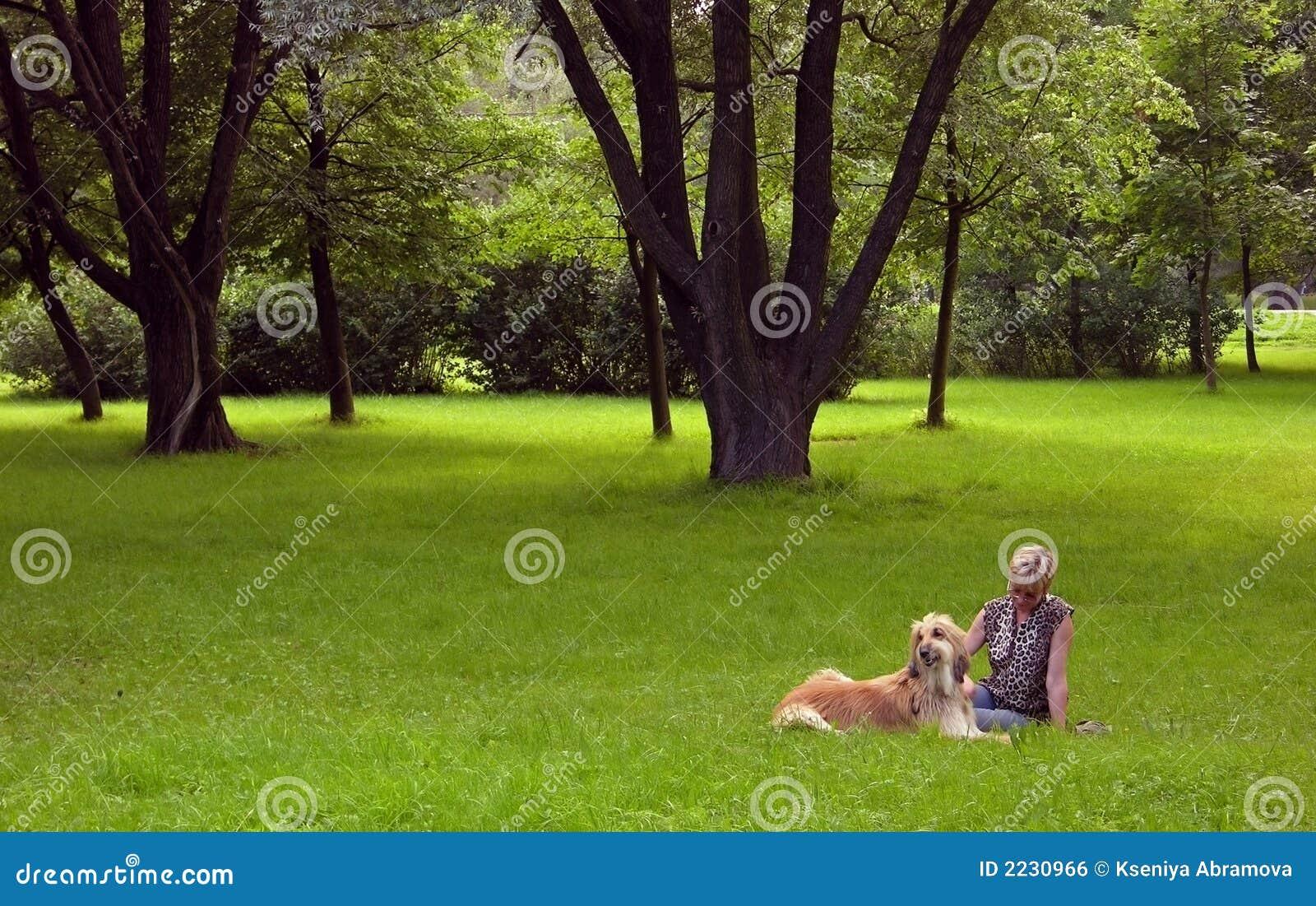 αφγανική γυναίκα σκυλιών