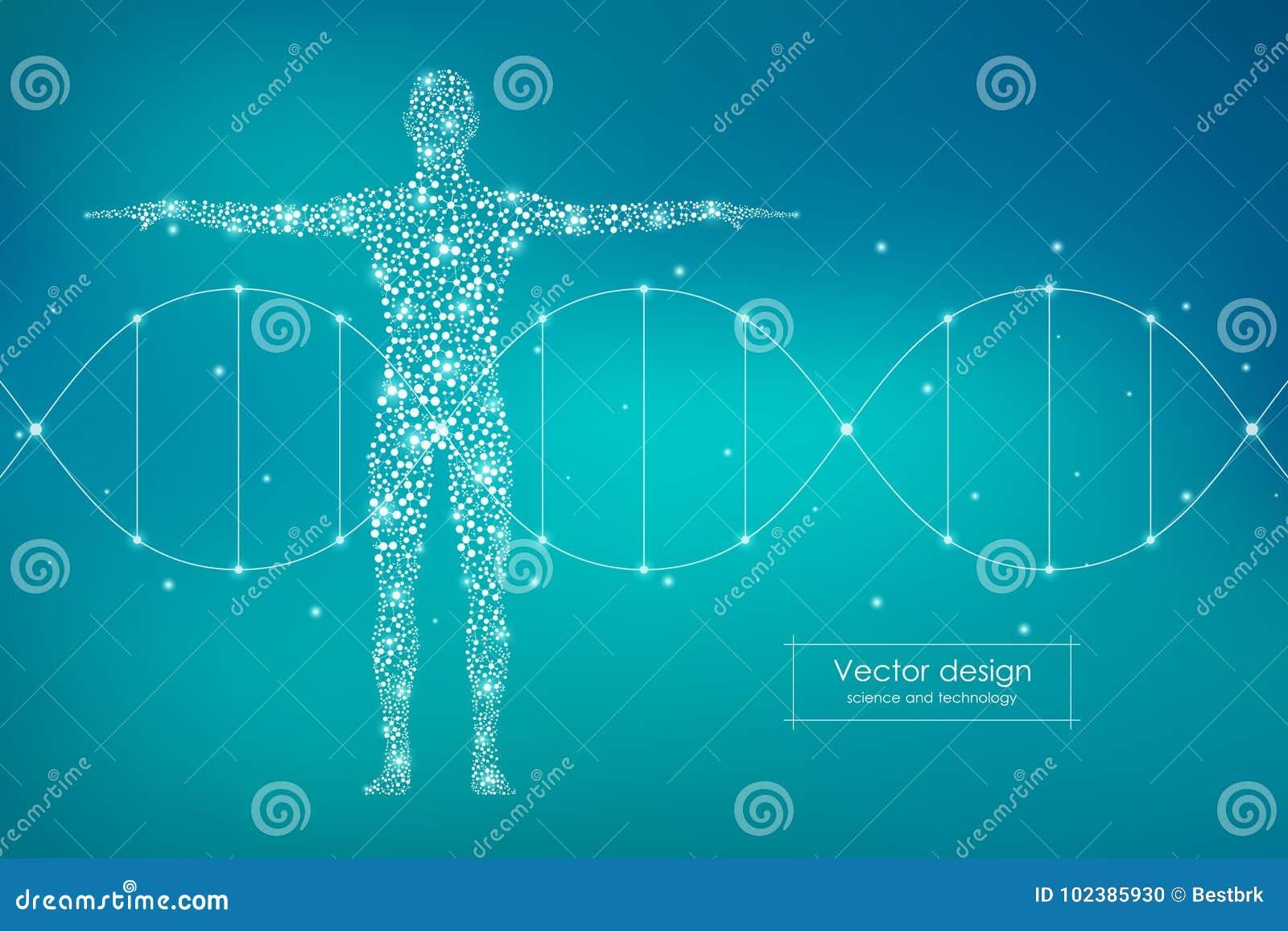Αφηρημένο ανθρώπινο σώμα με το DNA μορίων Έννοια ιατρικής, επιστήμης και τεχνολογίας επίσης corel σύρετε το διάνυσμα απεικόνισης