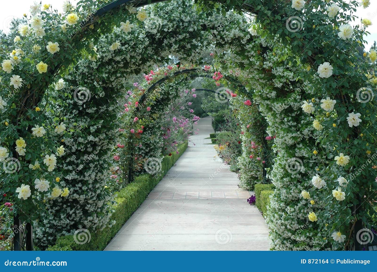 αψίδα floral