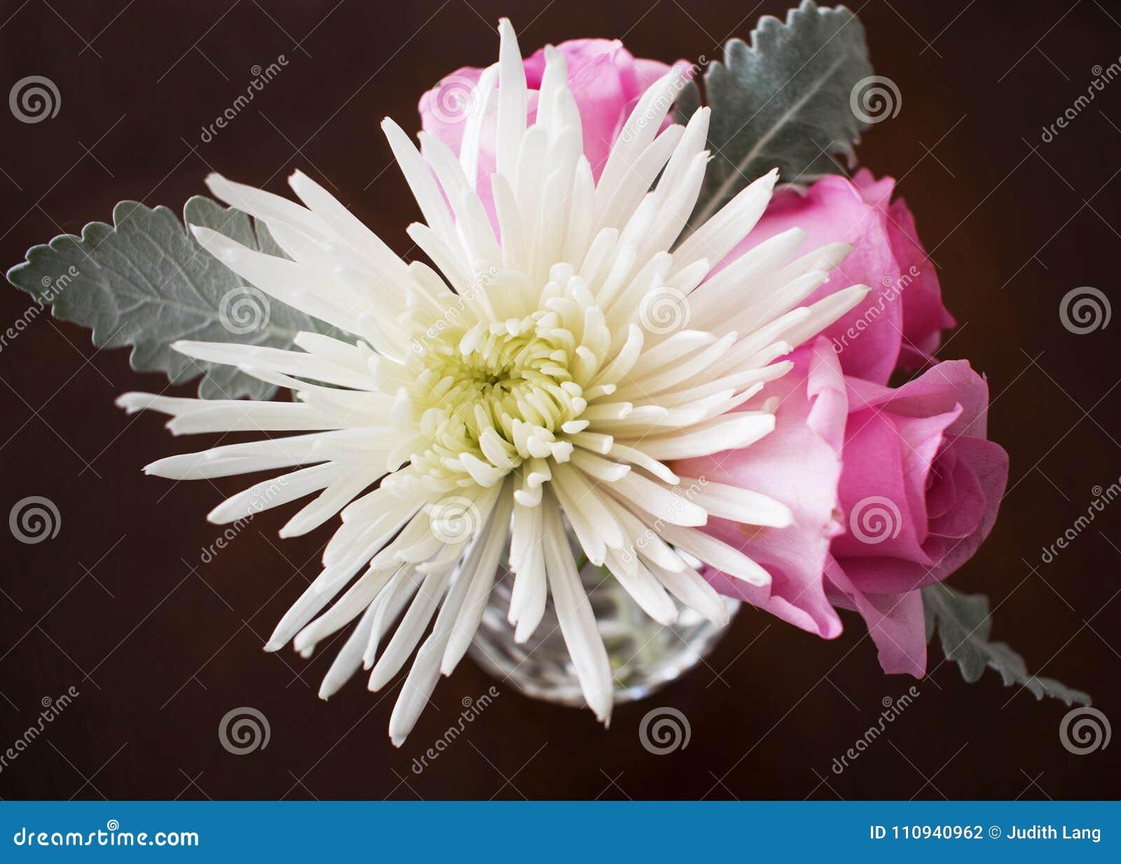 Βάζο με ένα άσπρο χρυσάνθεμο και τα ρόδινα τριαντάφυλλα