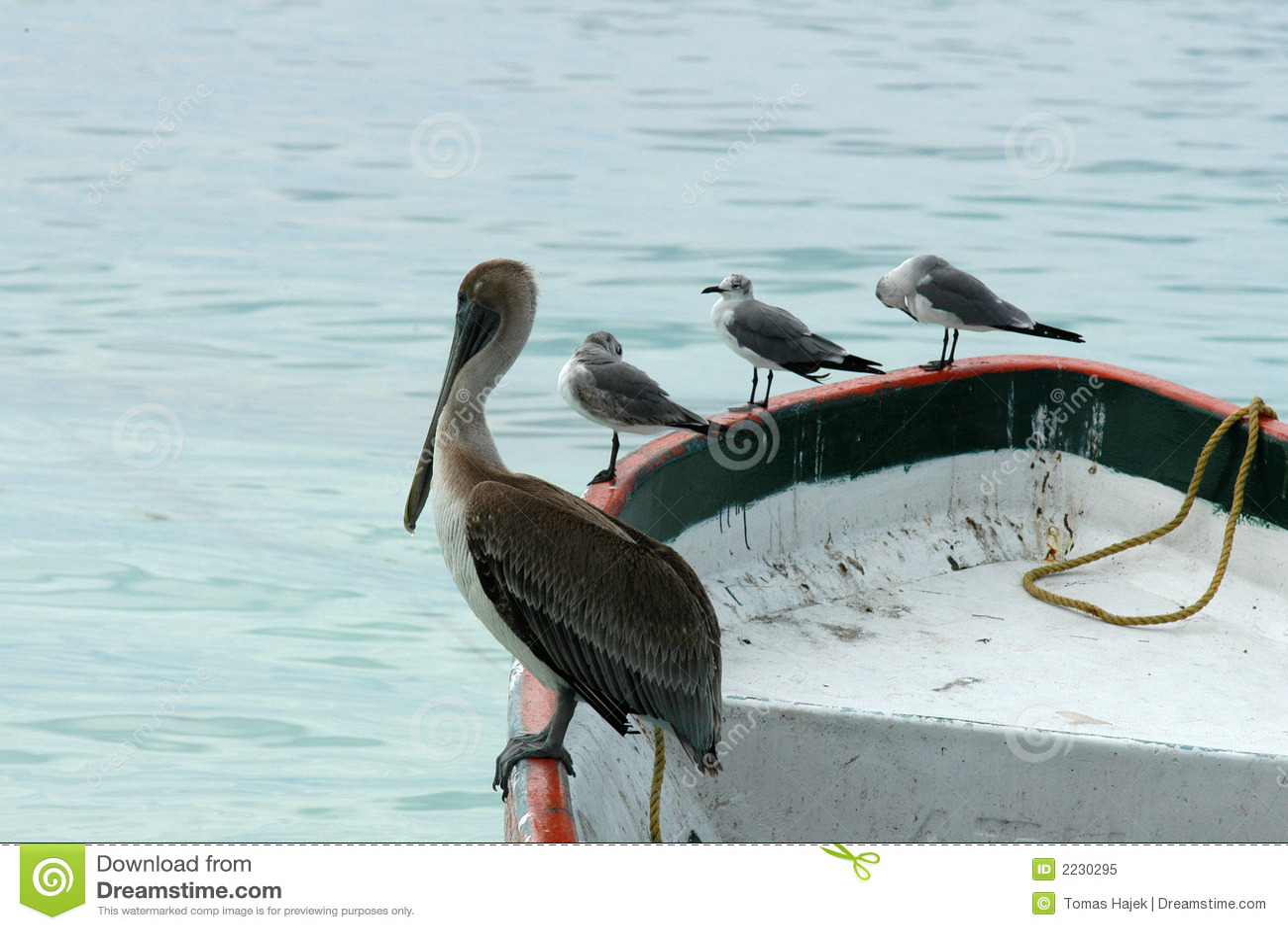 βάρκα που το Μεξικό