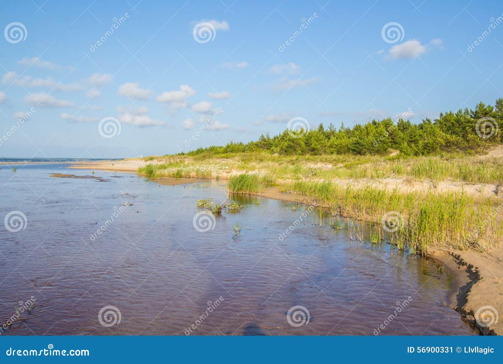 βήματα άμμου της Ρωσίας kurshskaya kosa οριζόντων αμμόλοφων που τεντώνουν