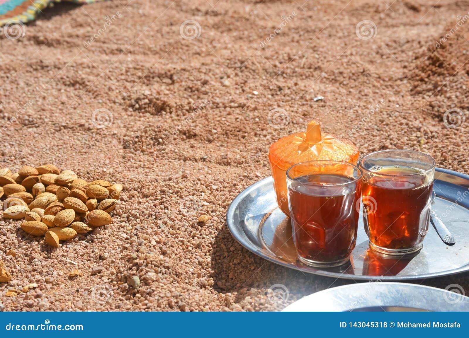 Βεδουίνη υποδοχή ένα φλυτζάνι του τσαγιού με τα αμύγδαλα, Sinai