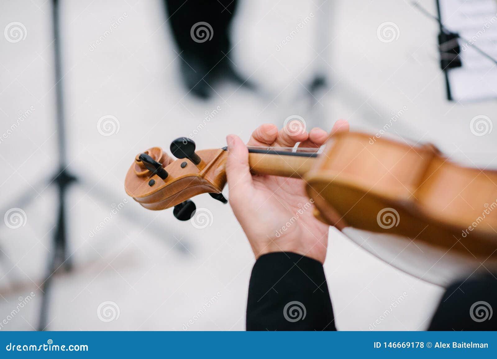 Βιολί παιχνιδιού μουσικών με το τόξο κοντά επάνω
