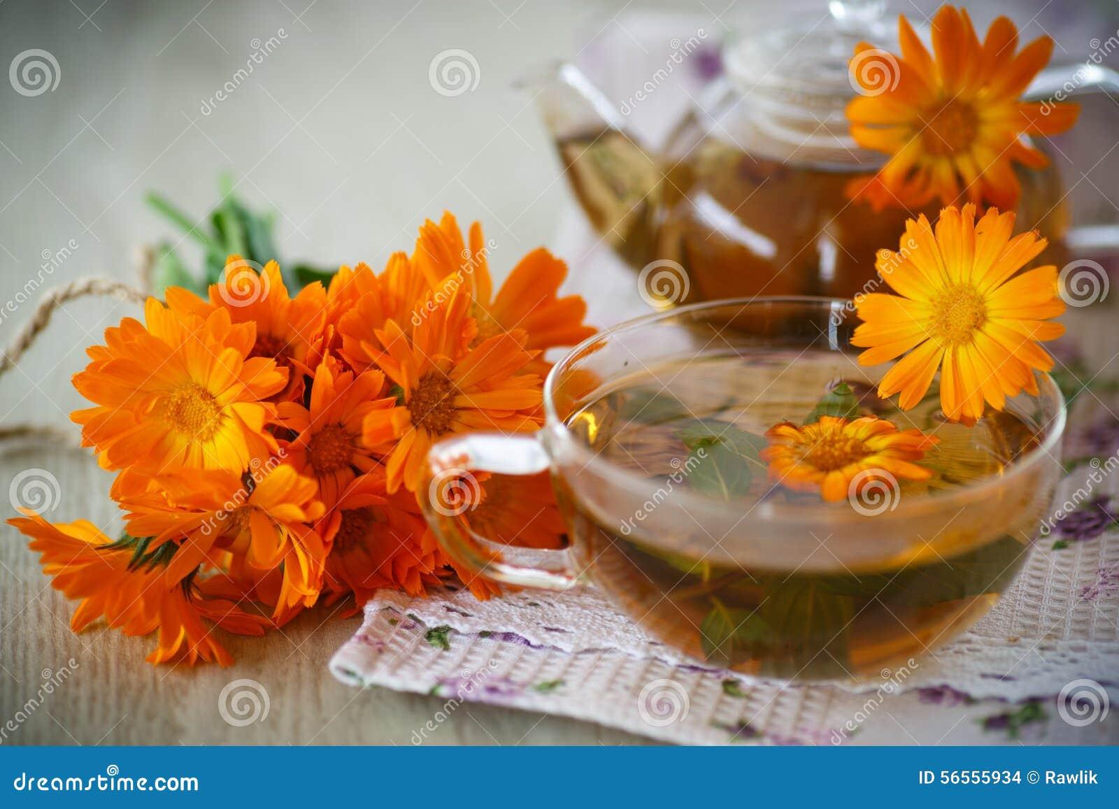 Download Βοτανικό τσάι με Marigold τα λουλούδια Στοκ Εικόνες - εικόνα από υγιής, προσοχή: 56555934