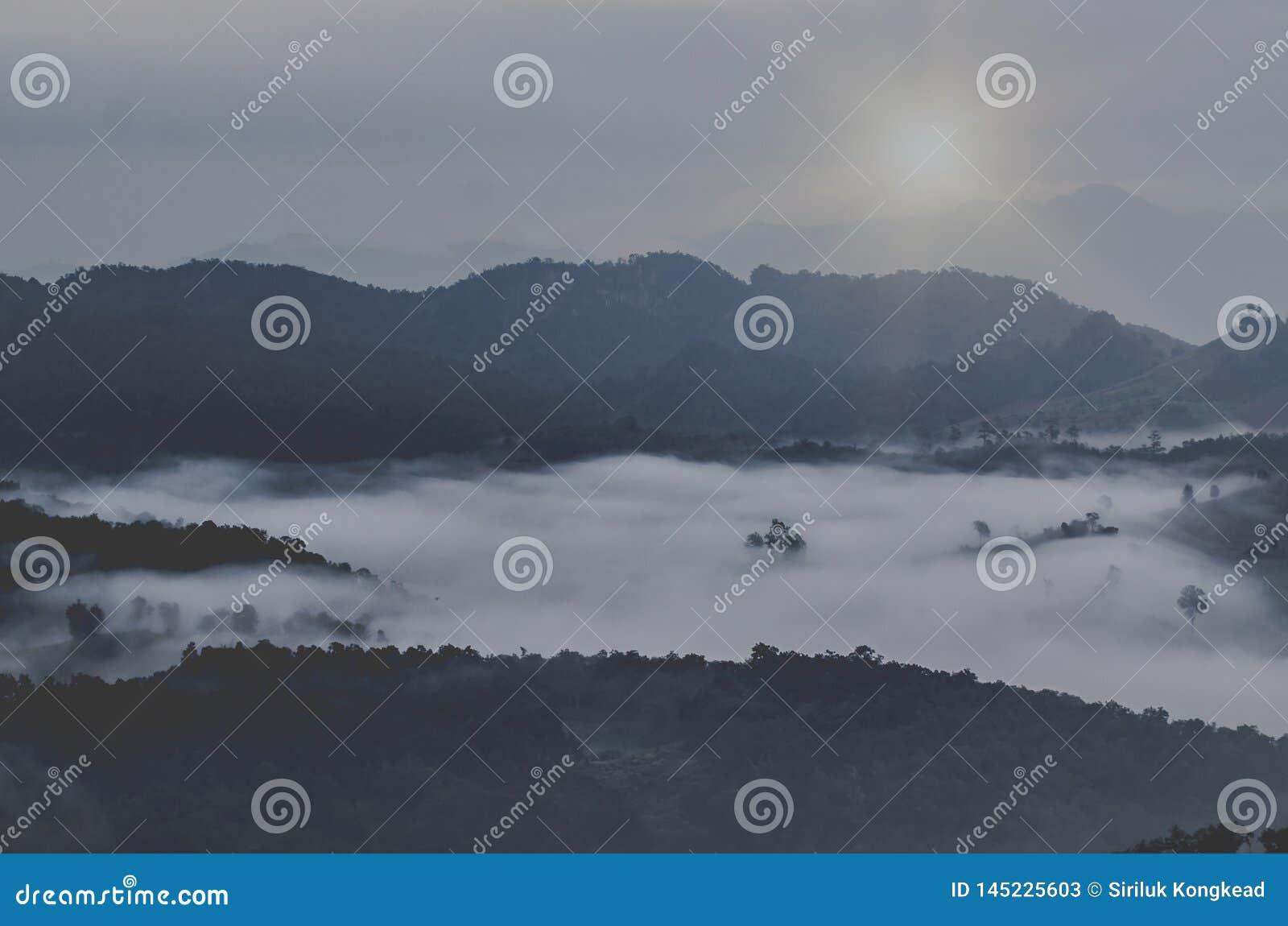Βουνά, δέντρα και ομίχλη, όμορφο τοπίο
