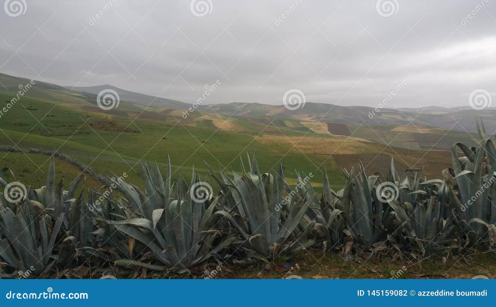 Βουνά και πόλης περιοχή fes, Μαρόκο