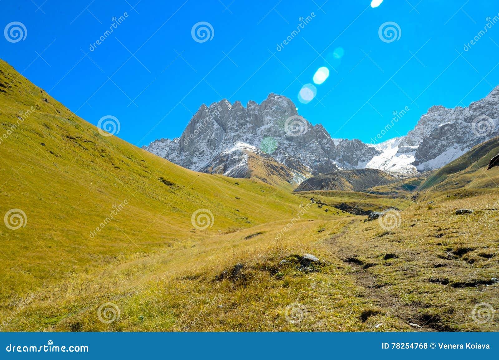 Βουνά Καύκασου το καλοκαίρι, την πράσινη χλόη, το μπλε ουρανό και το χιόνι σε μέγιστο Chiukhebi