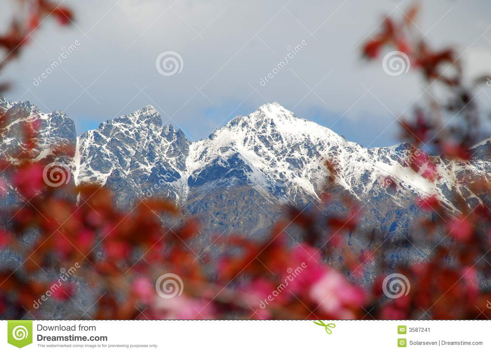 βουνά χλωρίδας