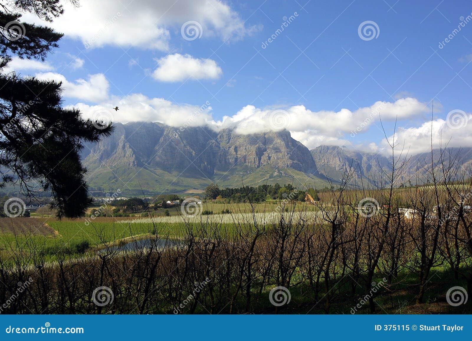 βουνά stellenbosch