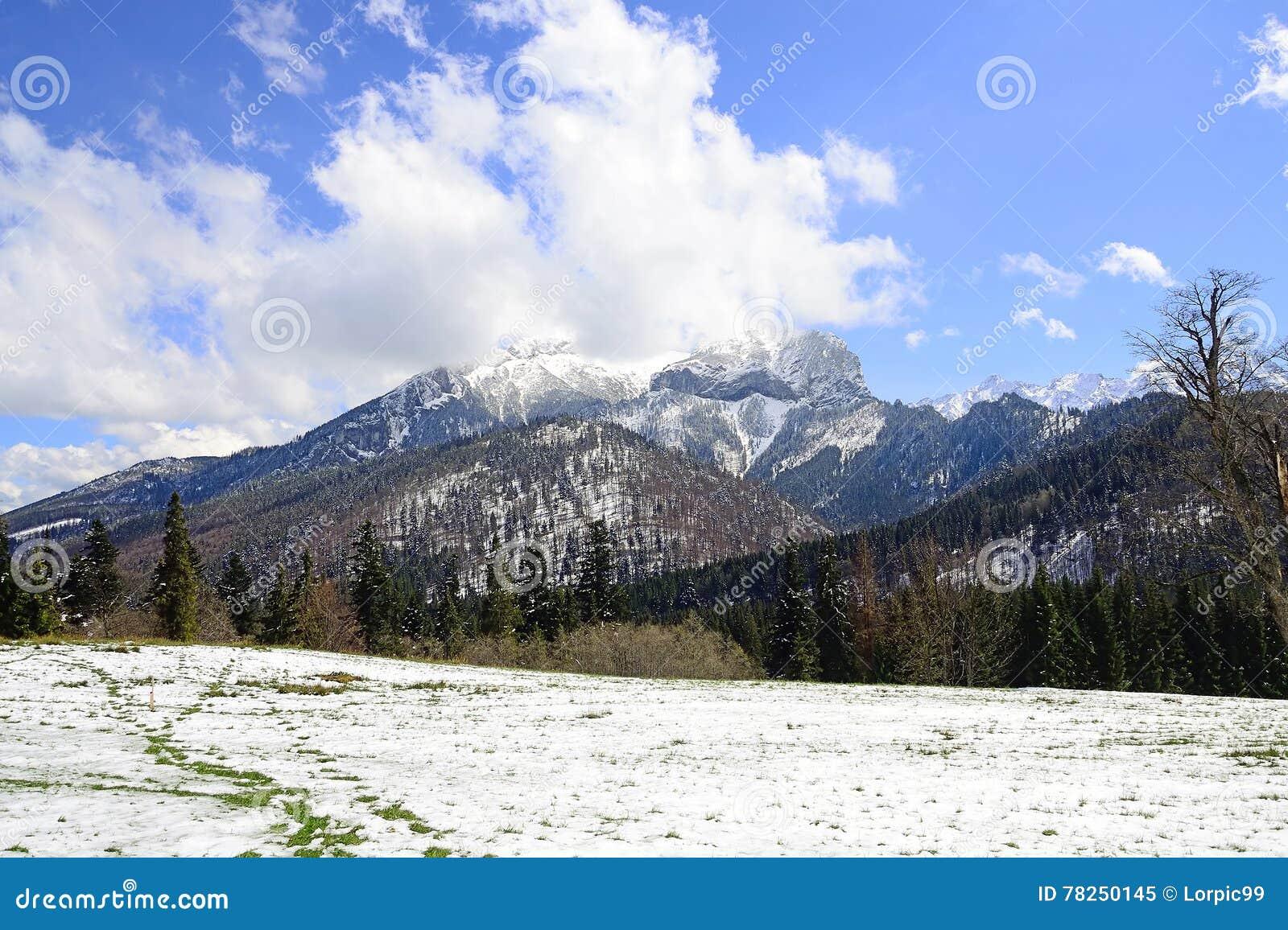 Βουνά Tatra