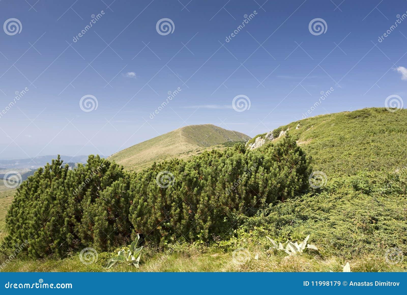 βουνό τοπίων
