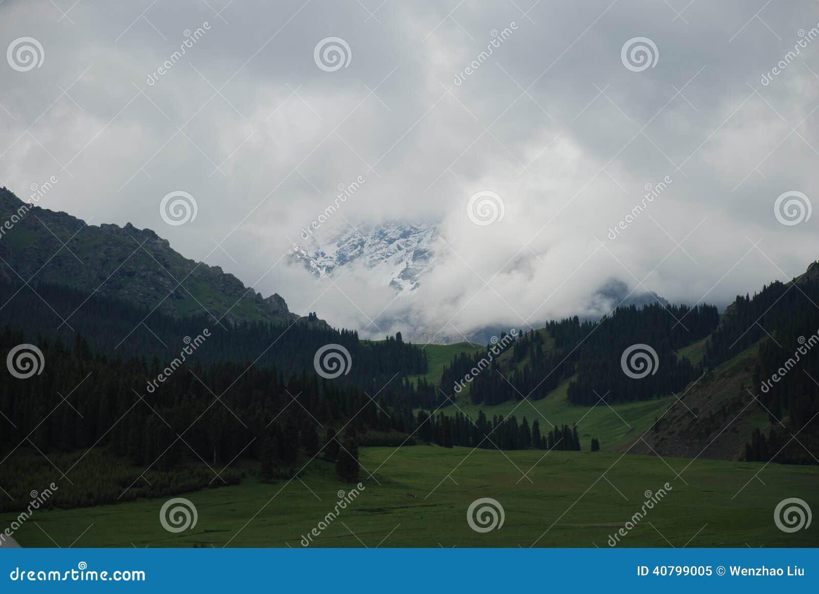 Βουνό χιονιού