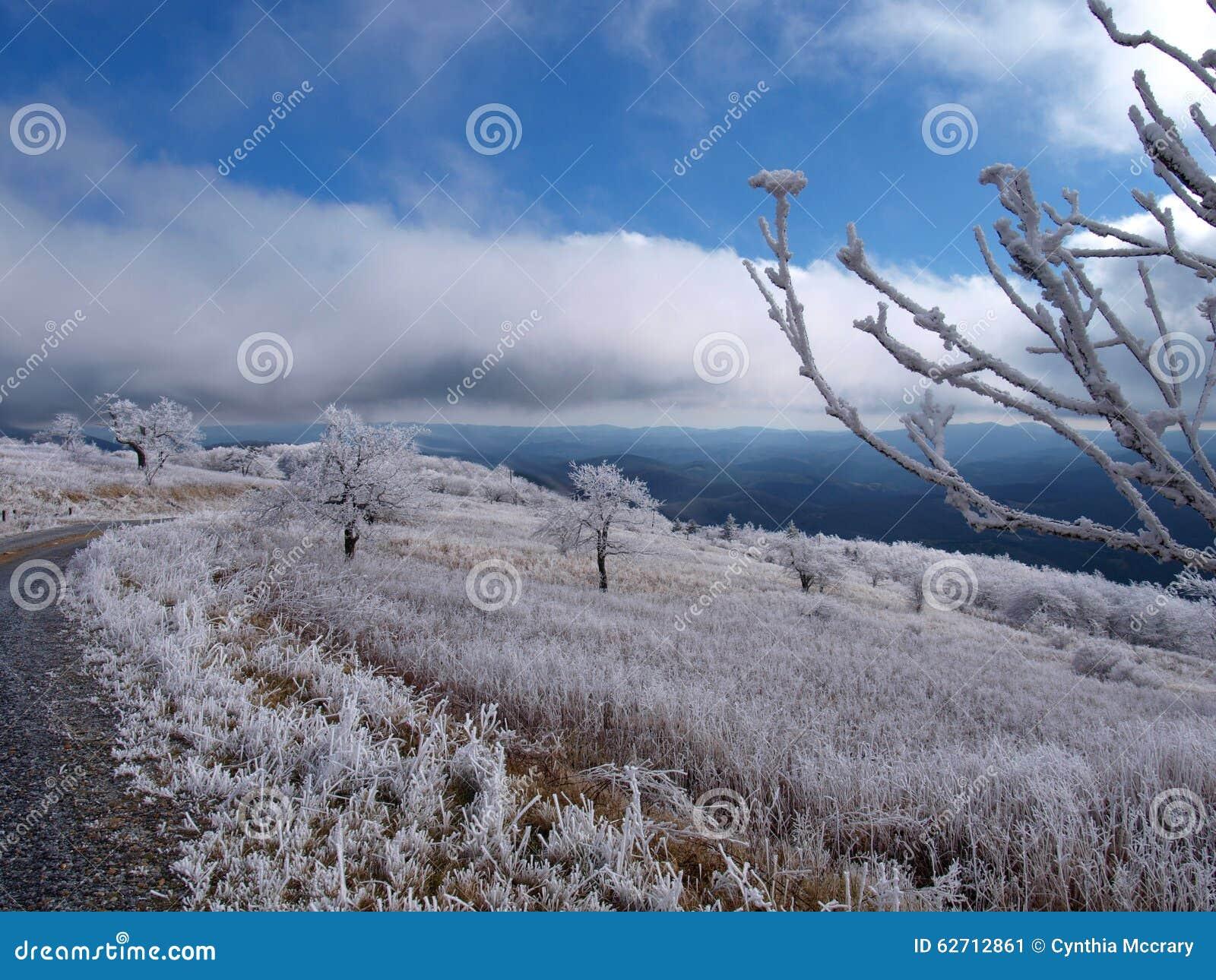 Βουνό Whitetop