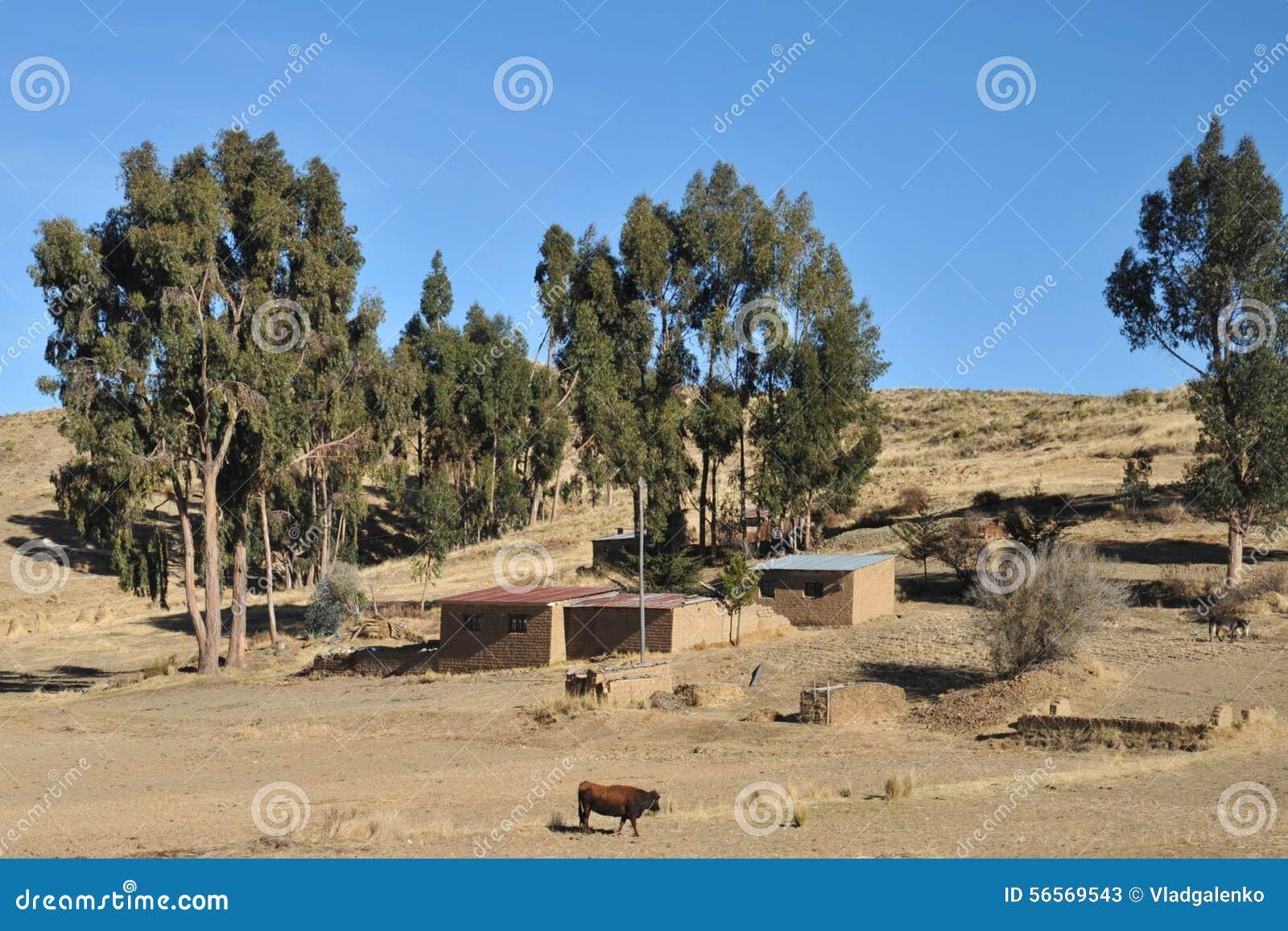 Download Βολιβιανό χωριό στις ακτές της λίμνης Titicaca Στοκ Εικόνα - εικόνα από φύση, boleyn: 56569543