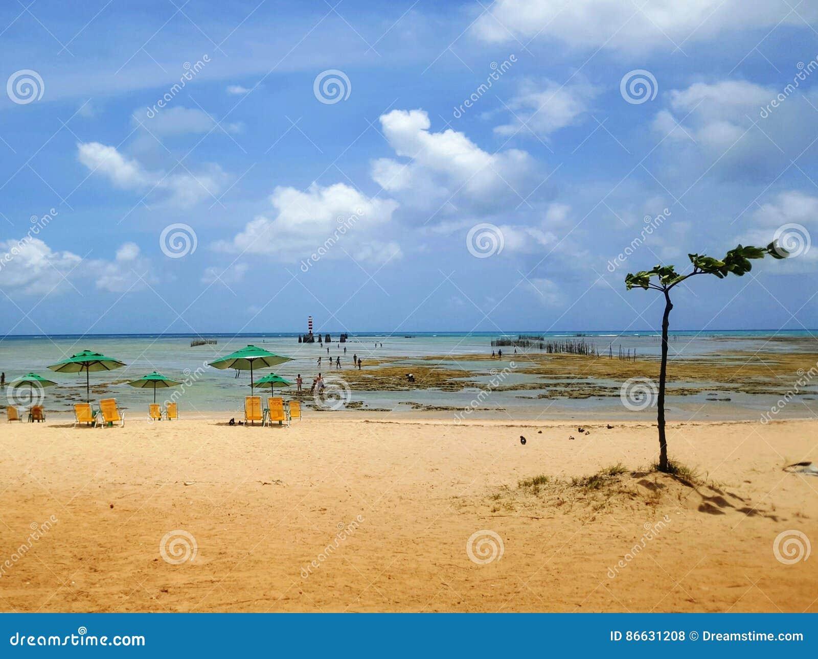 Βραζιλιάνα παραλία παραδείσου