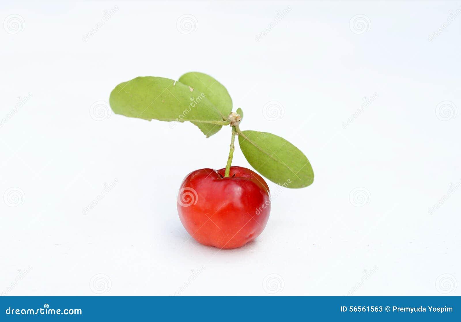 Download Βραζιλιάνα φρούτα Acerola στοκ εικόνα. εικόνα από χορτοφάγος - 56561563