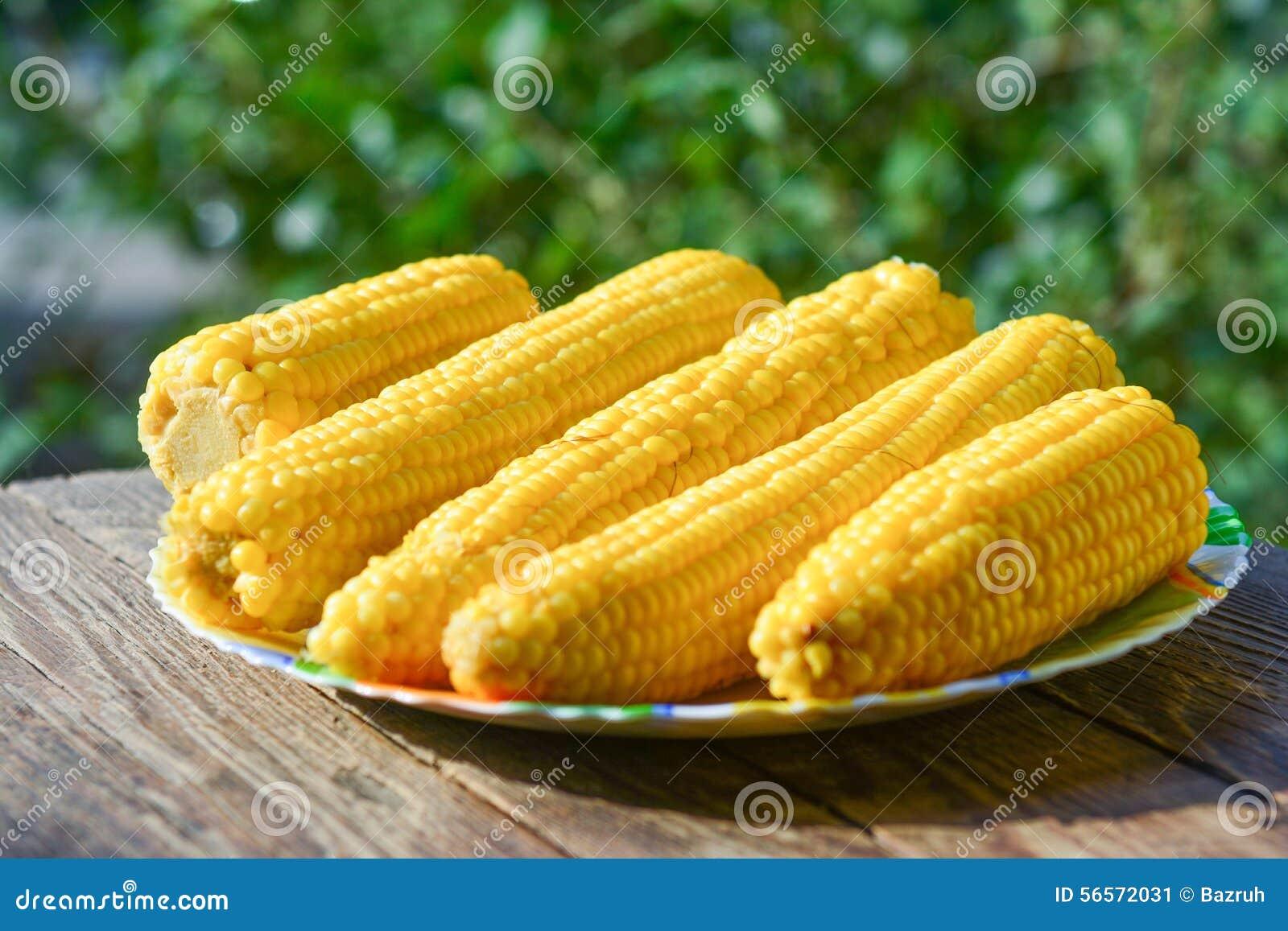 Download βρασμένο καλαμπόκι στοκ εικόνα. εικόνα από σιτάρι, κατανάλωση - 56572031
