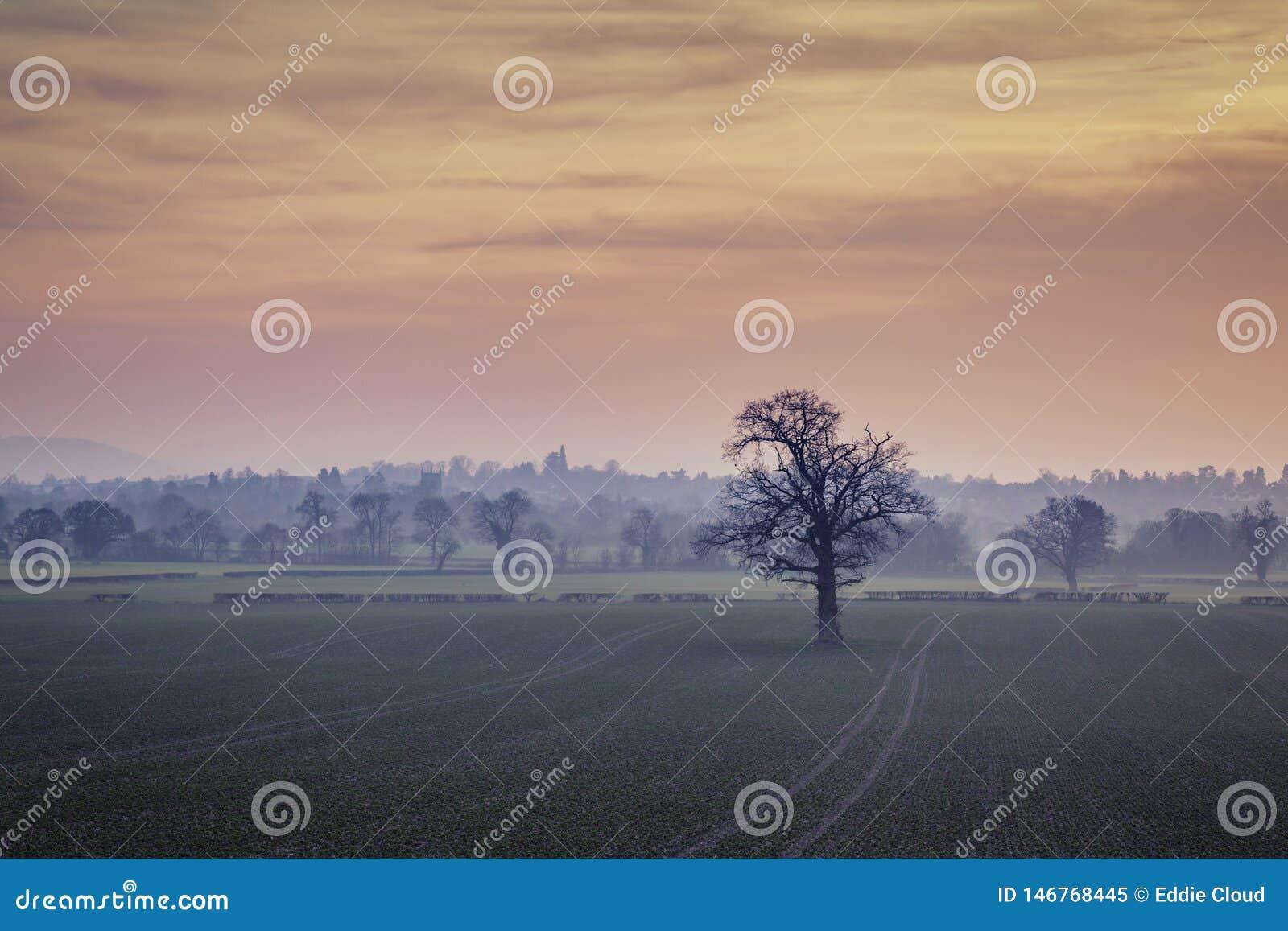 Βρετανικοί τομείς επαρχίας στο μουντό ηλιοβασίλεμα