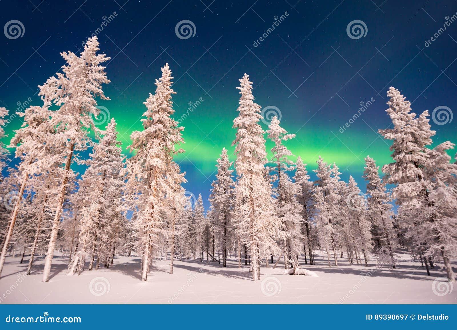 Βόρεια φω τα, αυγή Borealis στο Lapland Φινλανδία