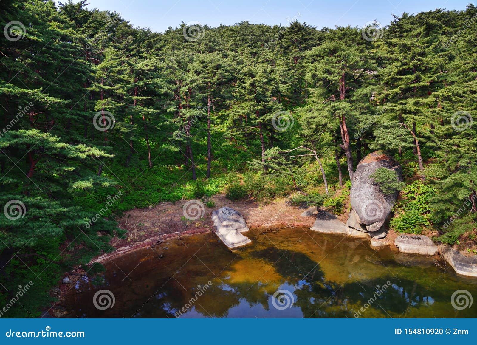 Βόρειο κορεατικό τοπίο Κόκκινη κορεατική δασική λίμνη Samilpo πεύκων