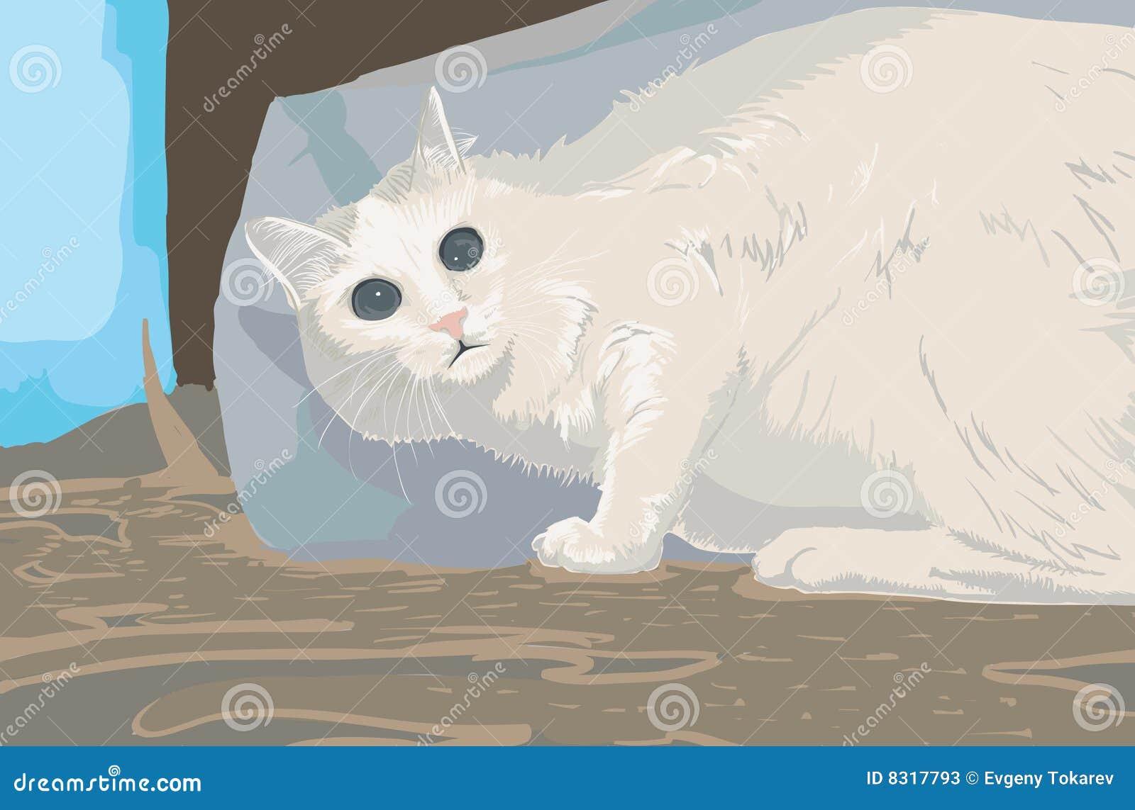 γάτα που φοβάται