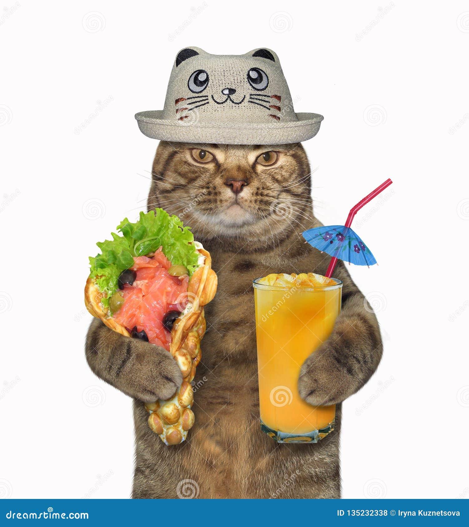 Γάτα σε ένα αστείο καπέλο με τις μαλακές βάφλες