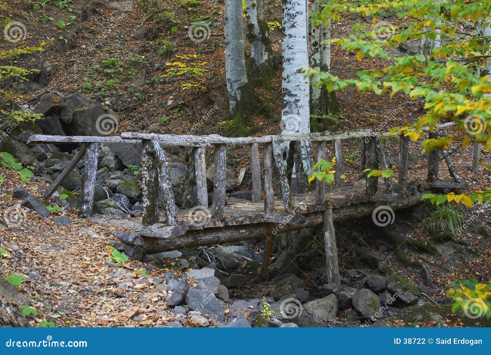 γέφυρα ξύλινη