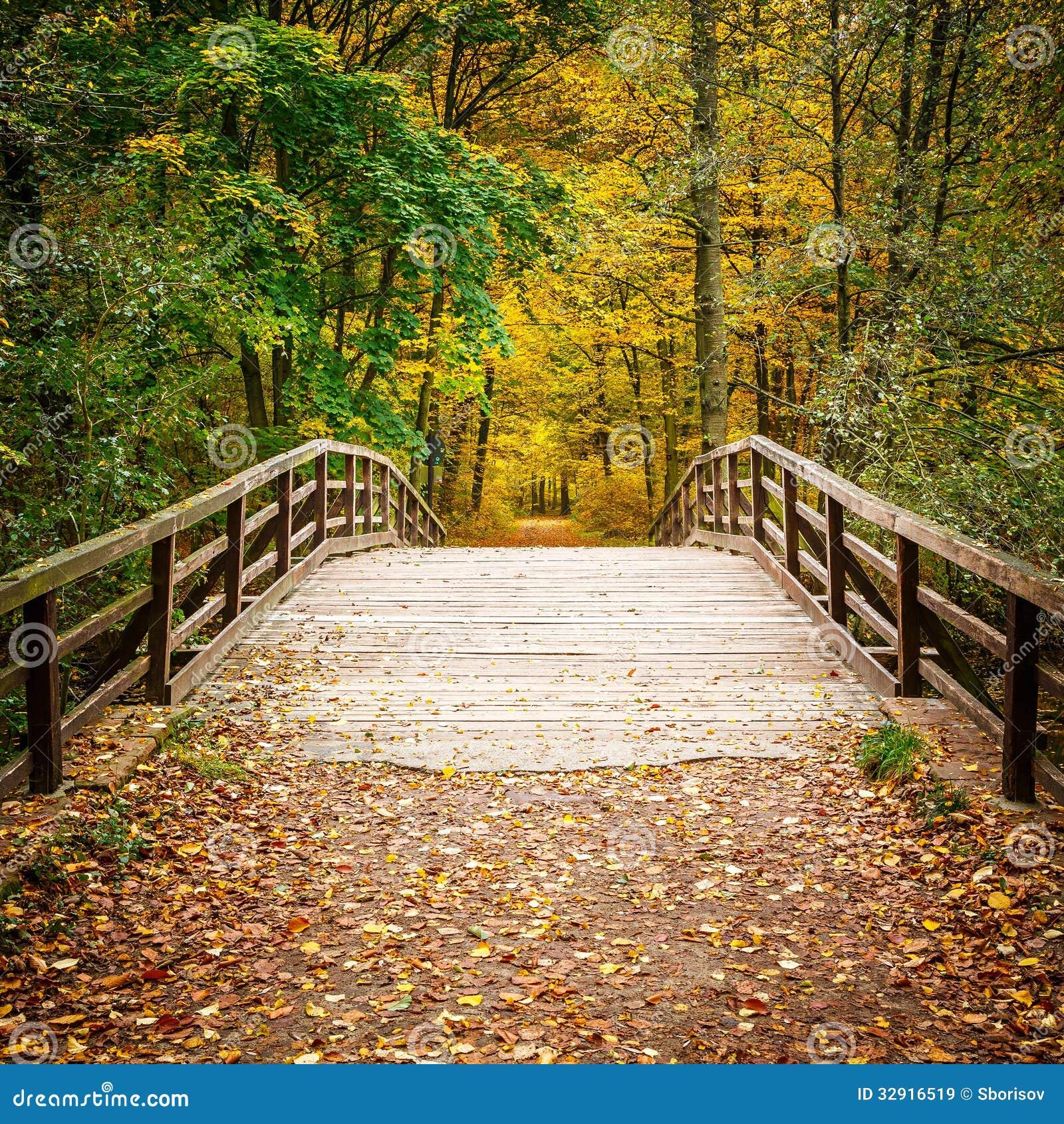 Γέφυρα στο δάσος φθινοπώρου