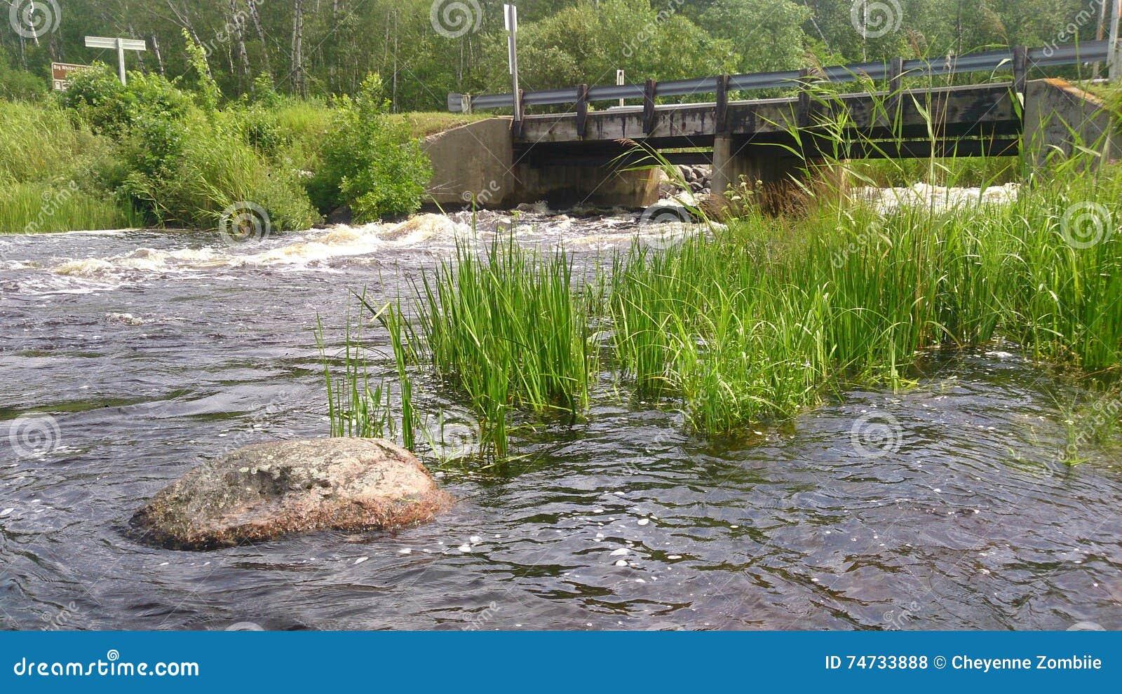 Γέφυρα χώρας