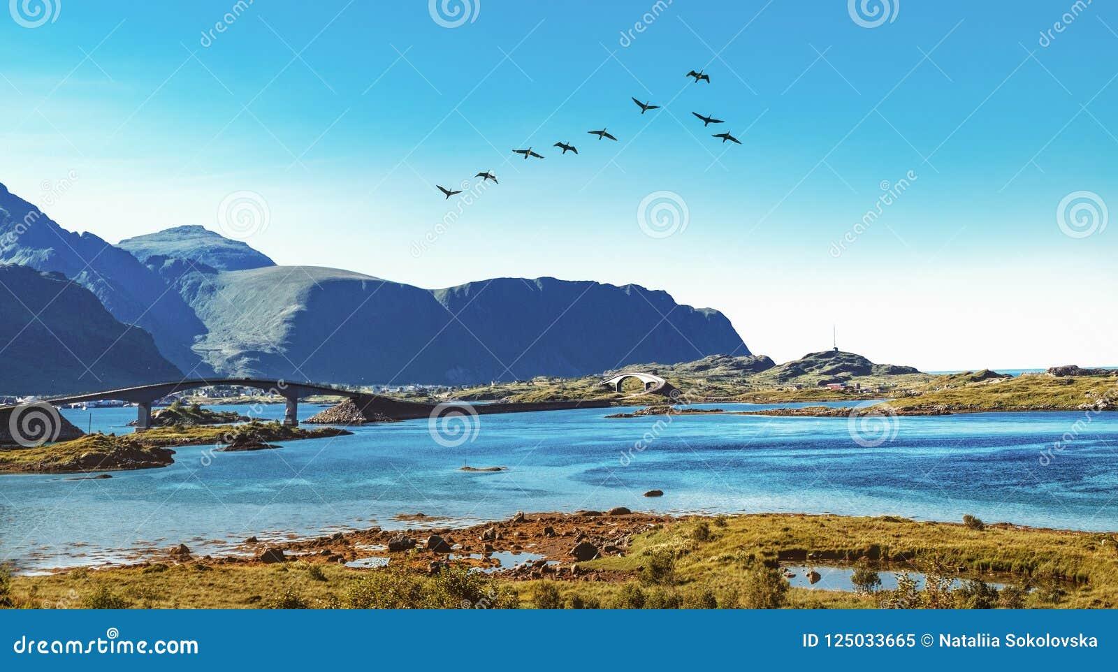 Γέφυρα Fredvang στο αρχιπέλαγος Lofoten, Νορβηγία